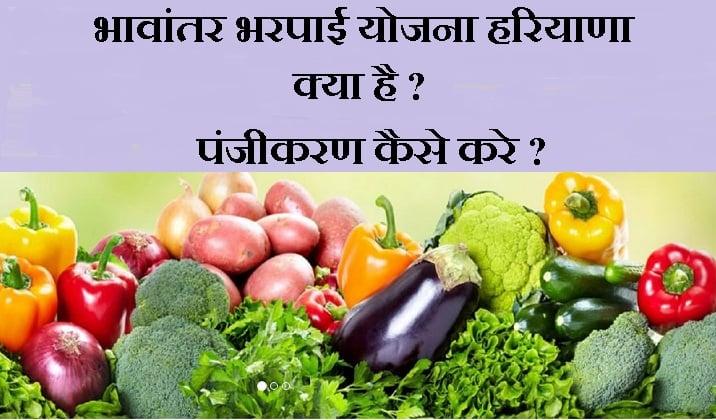 haryana-bhavantar-bharpai-yojana-in-hindi